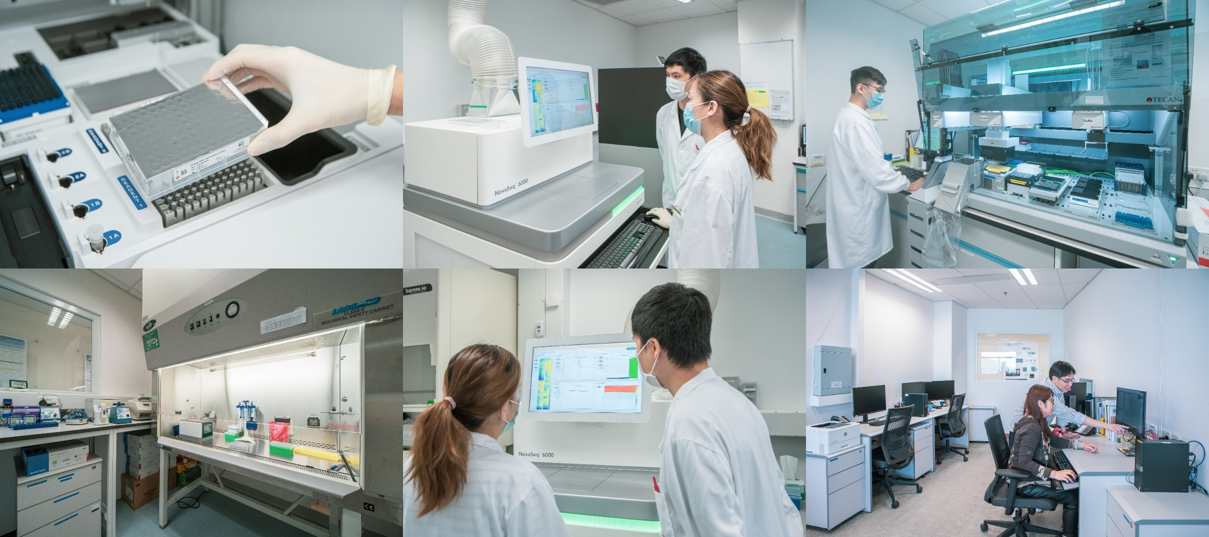 Centre for PanorOmic Sciences (CPOS), LKS Faculty of Medicine, The University of Hong Kong